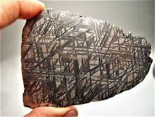 Niedrig Preis! Sensationelle Scheibe! Muonionalusta Swedish Eisen Meteorit 120.7