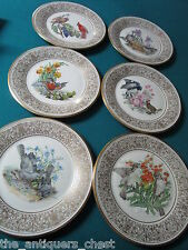 Boehm Birds 6 Annual Plates by Lenox, years 1976 to 1981, signed, gold rim[a4*9]