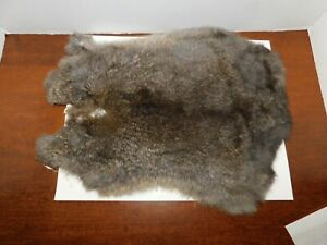 NICE TANNED RABBIT FUR PELT -------- SOFT AND READY FOR USE (M-R-5)