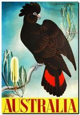 Vintage Travel Poster CANVAS PRINT Australia Banksia & Black Cockatoo A3