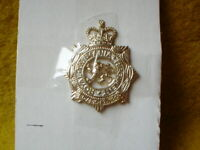 C  AUSTRALIAN ARMY 1 SMALL METAL BADGE   5CM ROYAL TASMANIAN REGIMENT SEW ON