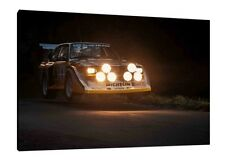 Audi S1 Quattro - 30x20 Inch Canvas Art Work Framed Picture Rally Print