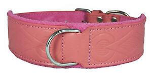 Pink Retro Design Leather Staffy Staffordshire Bull Terrier Dog Collar Bulldog