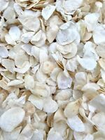 Ivory Petals Natural Biodegradable Wedding Confetti. Dried Petal Confetti Petals