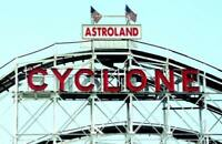 5 Coney Island Postcards Collection Set Lot Blank Bulk for Mailing