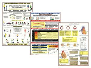 Heart Disease Information Charts Healthy Heart Exercise Posters