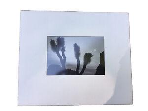 Vintage ANSEL ADAMS Joshua Trees And Moon Photo Art Harris Graphics No Reserve