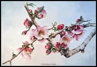 Japanese Cherry Blossoms - Chart Counted Cross Stitch Patterns Needlework