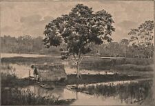 Flooded banks of the Amazon. Brazil. Amazonia 1885 old antique print picture