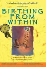 Birthing from Within: An Extra-Ordinary Guide to Childbirth Preparation, Very Go