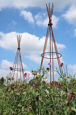 2.3m Tall Folding Metal Wigwam Bean Poles Garden Plant Support Obelisk