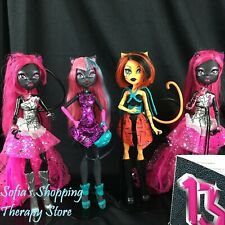 Monster High Doll 13 Wishes Boo York Catty Noir Fierce Rockers Toralei Dolls