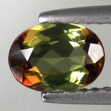 0.52Ct World Class Gem - Amazing Multi Color Sparkling Natural ANDALUSITE ANZ911
