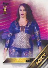 WWE Diva Wrestling Trading Cards