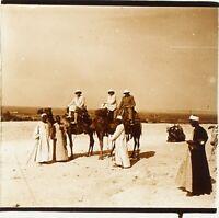 EGYPTE Voyage en Egypte Chameaux ca 1910, Photo Stereo Plaque Verre PL59OY2n3