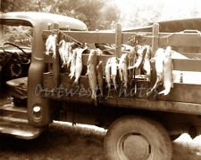 STRING STRINGER OF FISH HANGING ON A OLD PICKUP TRUCK FISHING PHOTO