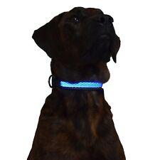 Green Jaguar Mesh Led Light Dog Collar Rechargeable (Medium, Blue)