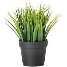 IKEA FEJKA Topfpflanze, künstlich, Kunstpflanze, Kunstblume Gras NEU