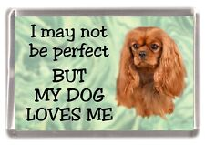 """Cavalier King Charles Fridge Magnet No.3  """"I may not be perfect .."""" by Starprint"""