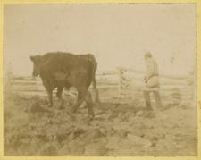 Canada, travaux des champs Vintage Print Tirage citrate  9x12  Circa 1890