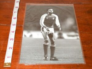 Wales FA Official press photo. George Berry.