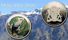 Malawi 2010 Huge 50mm Color 10 Kwacha-Birds Of Prey-Harpy Eagle