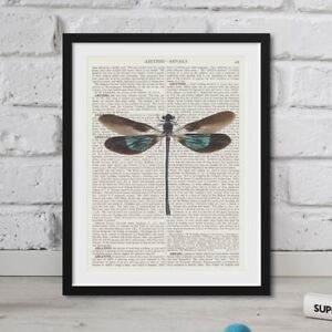 Vintage Dictionary Art Page Dragonfly Large Book Print FRAMED