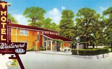 WESTWARD MOTEL Route 66 Roadside St. Louis, Missouri ca 1950s Vintage Postcard