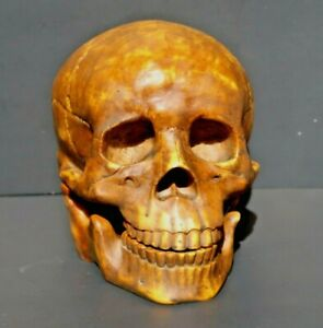 Momento Mori Skull Clock Z Gallerie Home Decor