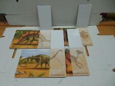 Set Dinosaur Flip Cards That Show Skeleton Structure Triceratops Stegosaurus +2