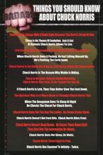 THINGS YOU SHOULD KNOW ABOUT CHUCK NORRIS ~ 23x34 HUMOR POSTER ~ NEW/ROLLED