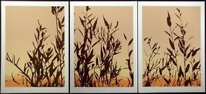 """Jim Boutwell """"Hinterlands I,II,III"""" Triptych 3 Signed Numbered Art Serigraphs"""