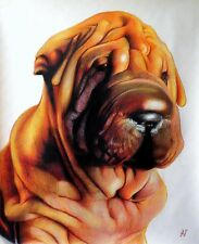Ritratto portrait di SHAR PEI (dog) - Matite colorate cm. 60 x 70