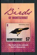 Montserrat 2016 MNH Birds of Montserrat Oriole 1v S/S National Bird Stamps