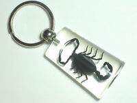 6 pieces Real Insect Keychain, black scorpion in clear acrylic