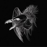 Buried At Sea - Migration (NEW CD)