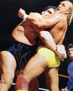 Hulk Hogan Signed 16x20 Photo *WCW *NwO Wrestling Tri-Star 7587918