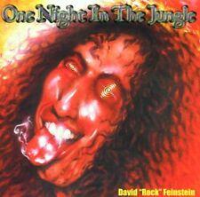 "David ""Rock"" Feinstein - One Night In The Jungle  MEGA RARE (The Rods, Elf)"