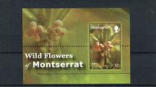 Montserratian Sheet Postal Stamps