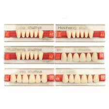 Résine Acrylique Prothèse 84 Dent VITA Supérieurs Inférieur Ombre Dentaire TY1
