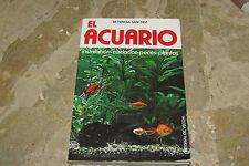 El acquario cura di installazione pesci e piante