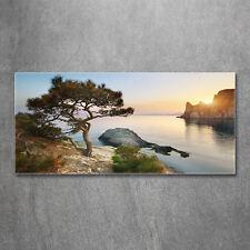 Glas-Bild Wandbilder Druck auf Glas 120x60 Deko Landschaften Baum am Meer