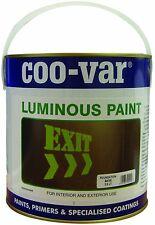 Luminous Paint - Pale Green - 500ml