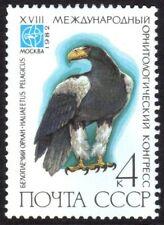 Steller's sea eagleHaliaeetus pelagicus mint no gum stamp