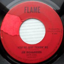JIM RICHARDSON teen popcorn 45 YOU'RE JUST TEASIN ME AIN'T GONNA BE vg+ e0418