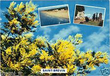 SAINT BREVIN   (H1940)