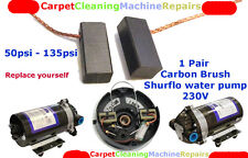 CARBON BRUSHES FOR Shurflo water pump 50-135psi Carpet Cleaning Machine
