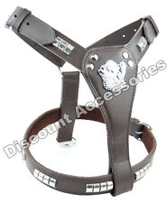 Brown Leather Dog Harness Staffordshire Bull Terrier Staffie Staffy