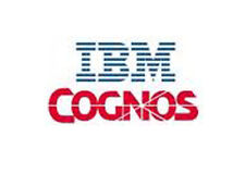 COGNOS 10 Video and Books Training Tutorials online files sharing