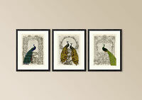Old Antique Book page Art Print - Vintage Peacock Set 1 Dictionary Page Wall Art